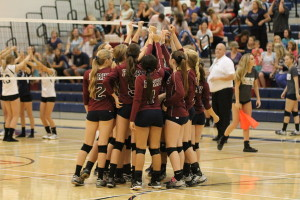 Volleyball program on right track after best season ever