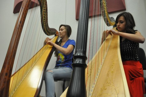 Harp players add unique dynamic range to orchestra
