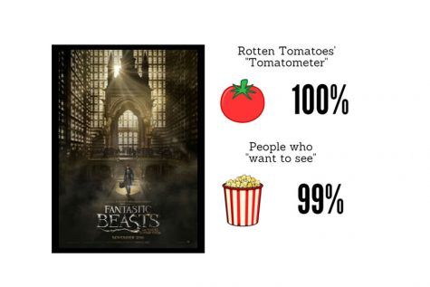 """Harry Potter world comes alive once more with release of """"Fantastic Beasts"""""""