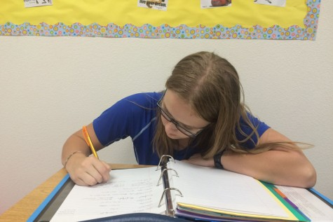 Sophomore aims for sky-high goals