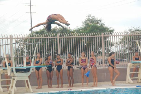 Swim and Dive personal accomplisments and team goals achieved