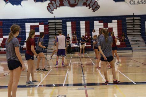 Badminton ready to move on to upper echelon