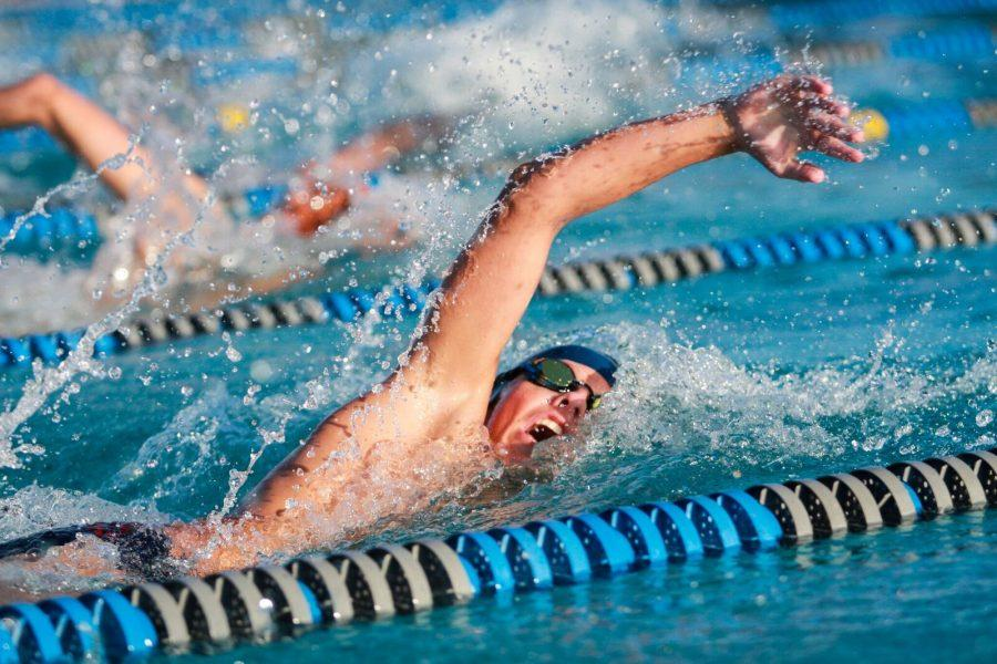 24 swimmers and divers went to state on November 5