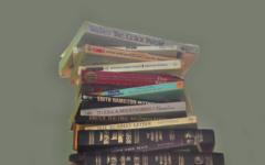 Divide between literature and understanding grows