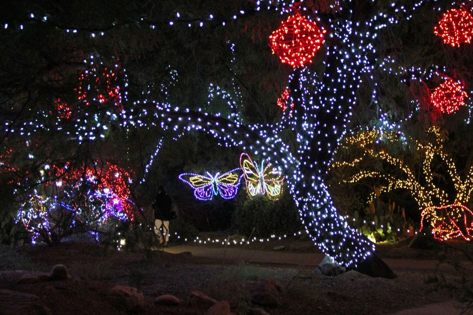 Zoo Lights will be active from Nov 22- Jan 14.