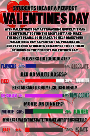 Students Idea of a Perfect Valentine's Day