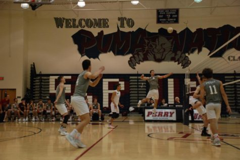 Puma men's volleyball ends season in quarterfinal round