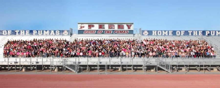 The+Class+of+2018+seniors+pose+for+the+traditional+panorama+photo.