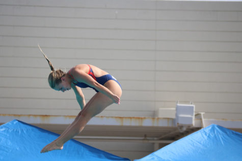 Junior Brooklyn Larson dives at the division-1 state championship on Nov. 8, placing fourth.