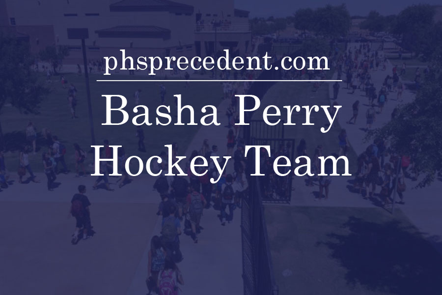 Perry and Basha as one in hockey: the joint team and how they're doing
