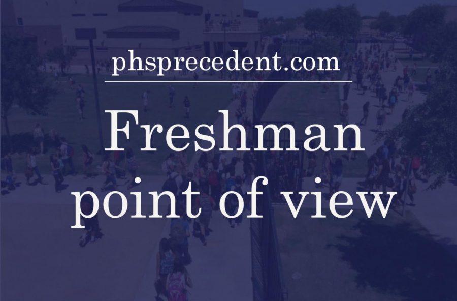 Freshman's struggles with online school