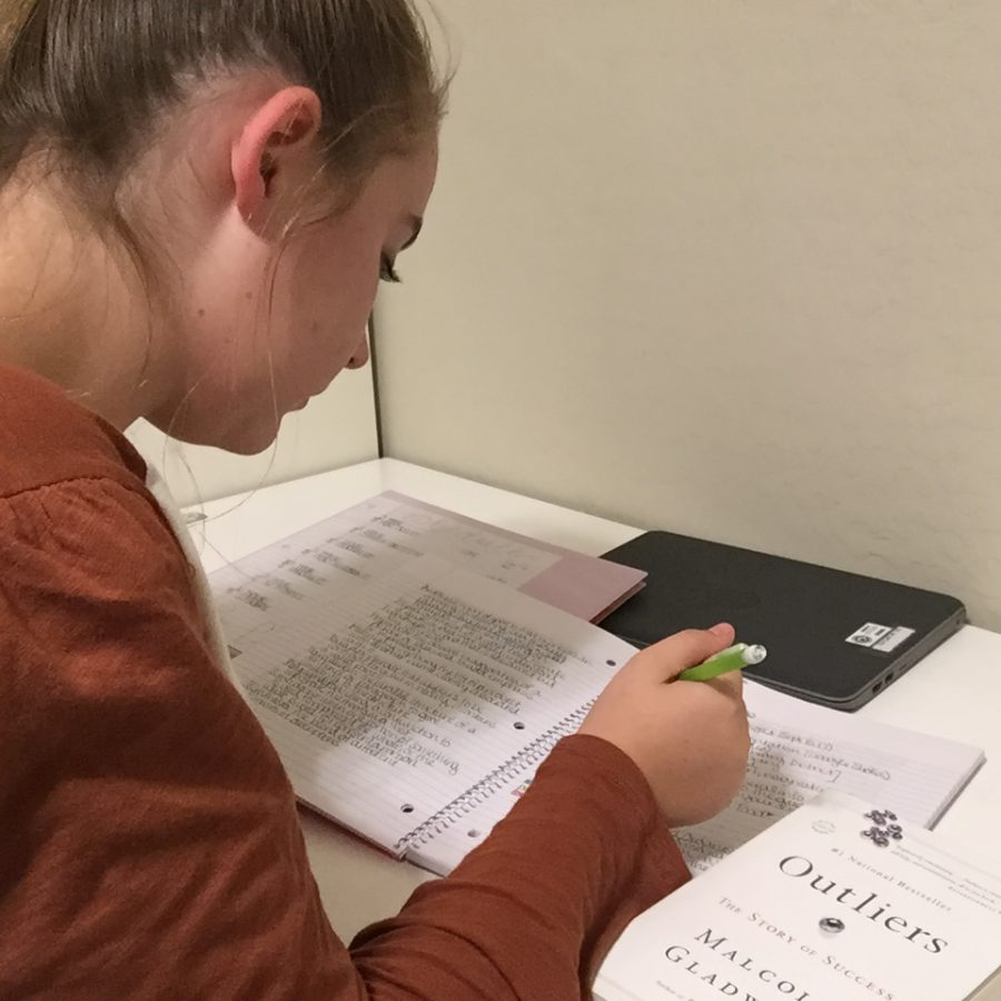 Saydria Ostler studies English notes after a virtual class. Students were expected to complete assignments and meet deadline expectations.