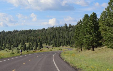 Choose your adventure: A day in Flagstaff