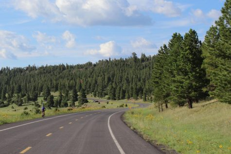 Flagstaff is the perfect place for a change of landscape.