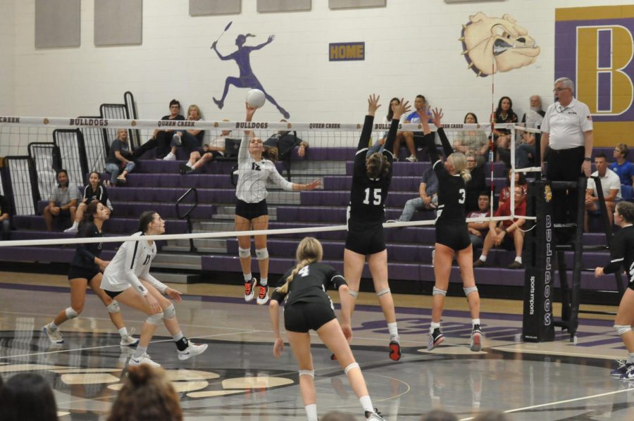 Senior outside hitter Layla Handler spikes the ball to the Queen Creek bulldogs court. The Pumas won against the Bulldogs losing one set out of four.